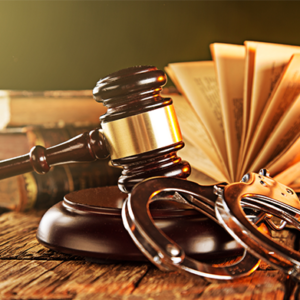 Law and Paralegal Courses